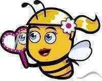 Вощина, препараты для пчёл, одежда