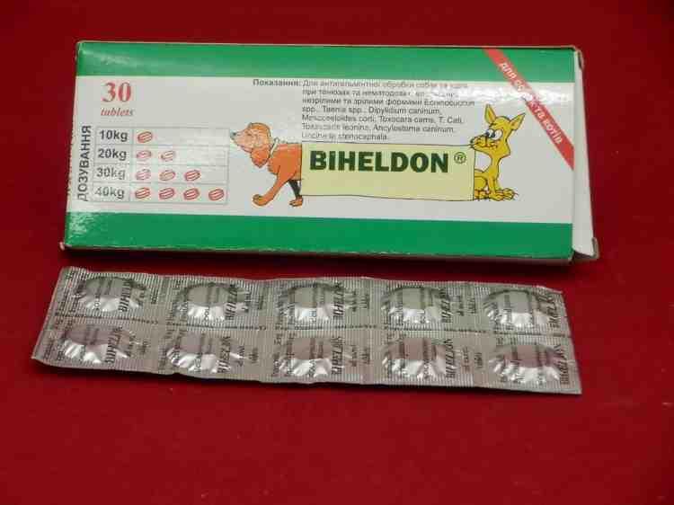 Бихелдон, антигельминтик для собак и котов,
