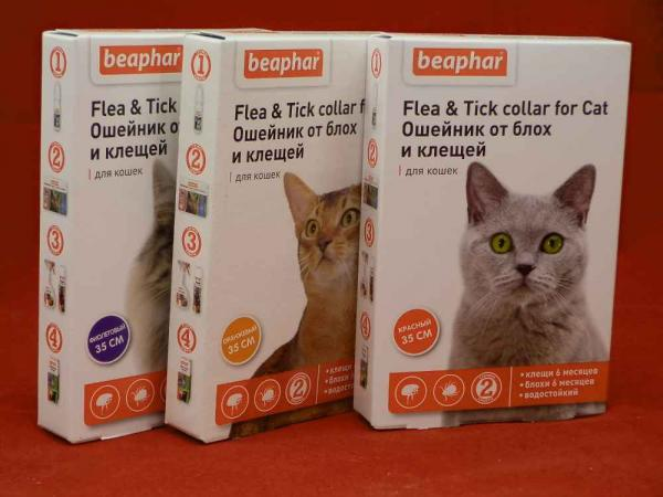 Беафар (Beaphar) - ошейник от блох и клещей для кошек цветной