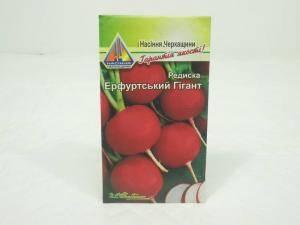 Семена редиса Ерфуртский гигант