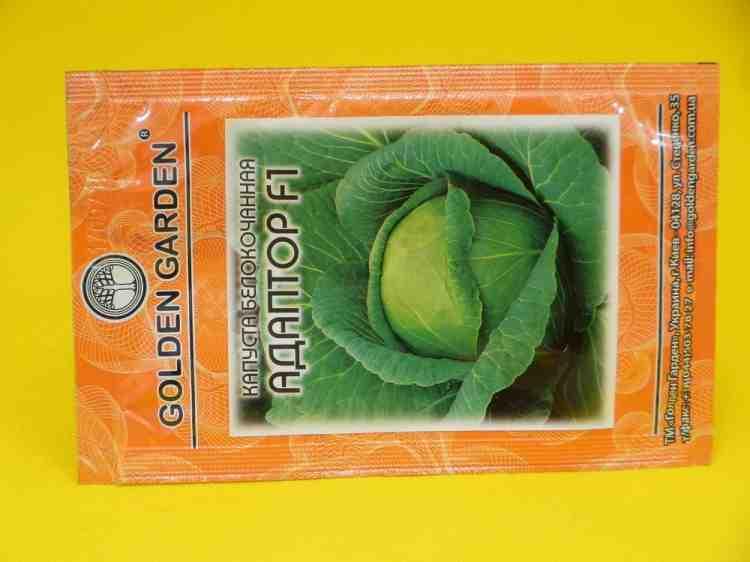 Семена капусты белокачанной сорта Адаптор F1