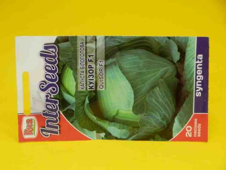 Семена капусты белокочанной Куизор F1