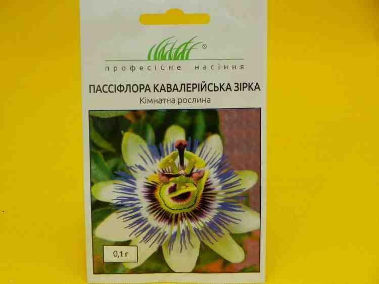 Семена пассифлоры сорта Кавалерская звезда