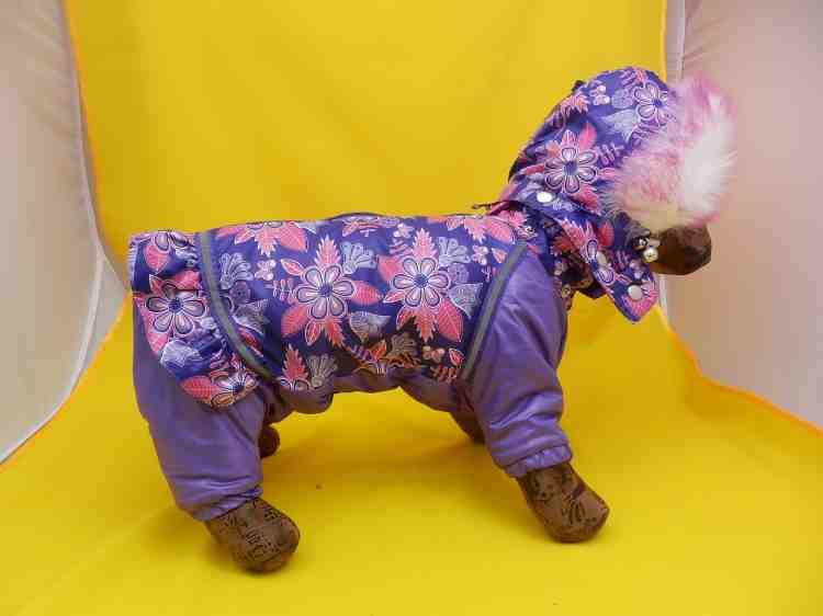 Комбинезон Минни для самых маленьких собак