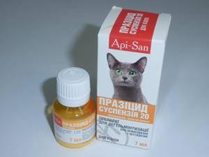 Празицид - 20 суспензия для кошек, антигельминтик, 1 флакон - 7 мл