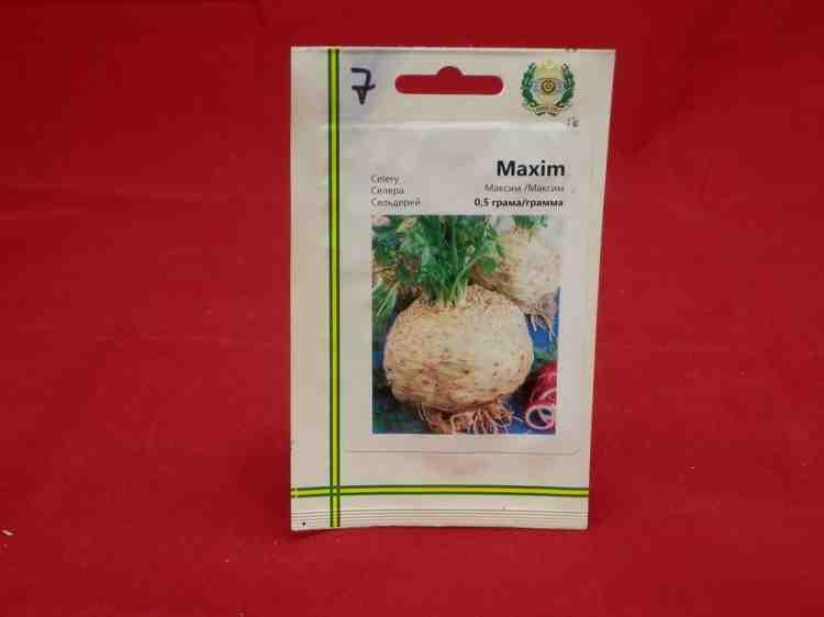 Семена сельдерея Максим