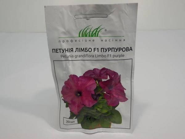 Семена петунии Лимбо F пурпурной