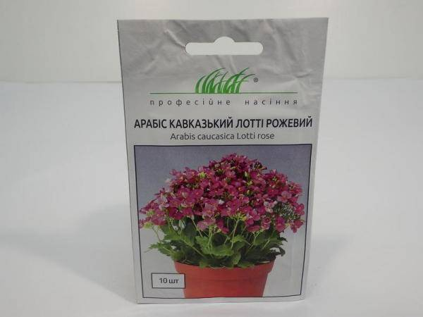 Семена арабиса кавказского  Лотти