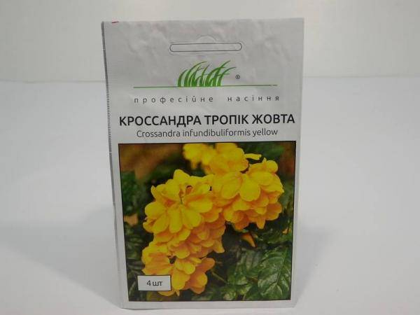 Семена кроссандры Тропик