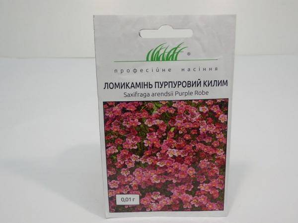 Семена ломикамень Пурпурный ковер
