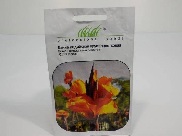 Семена канны индийской крупноцветковой