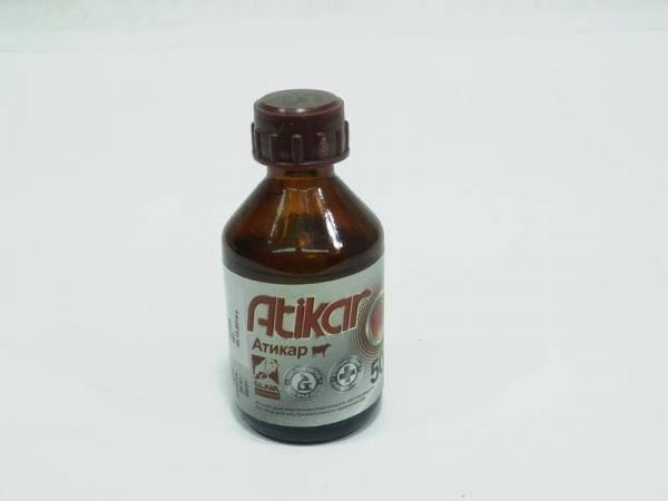Атикар, противомикробный препарат