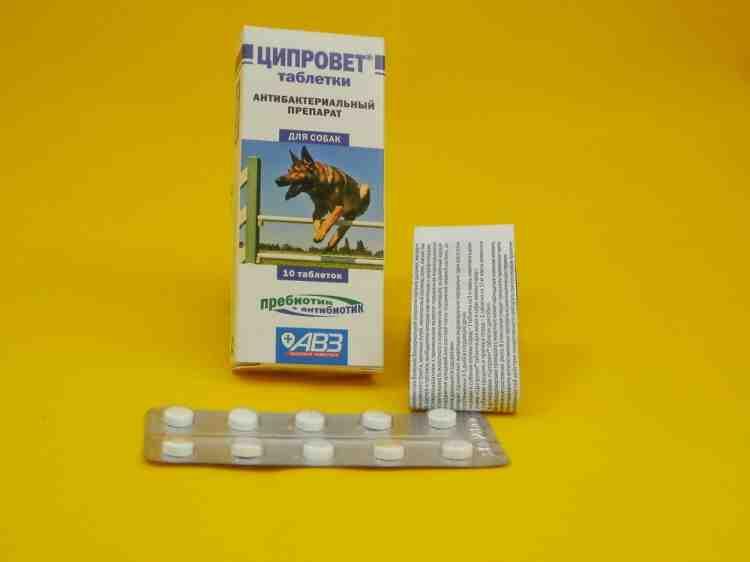 Ципровет таблетки