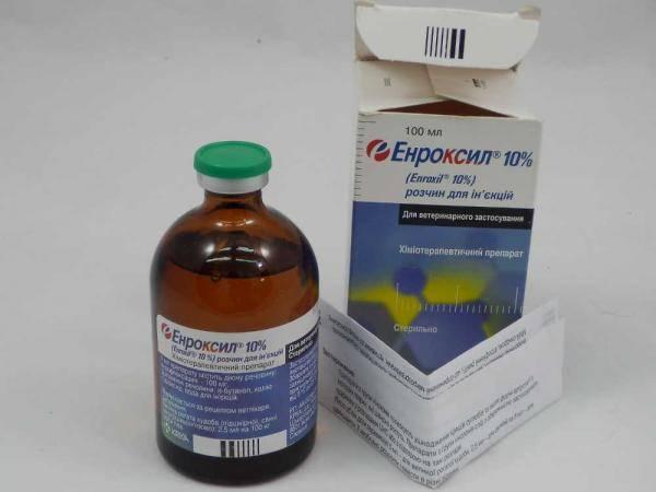 энроксил для ветеринарии