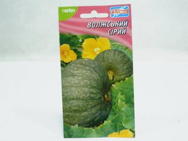 Семена тыквы Волжская серая - 15 семян