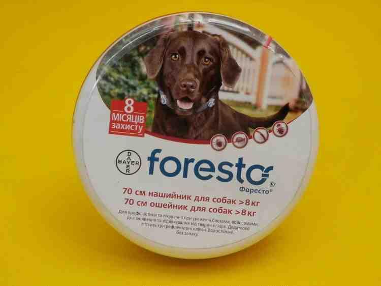 Форесто - ошейник для собак от клещей и блох