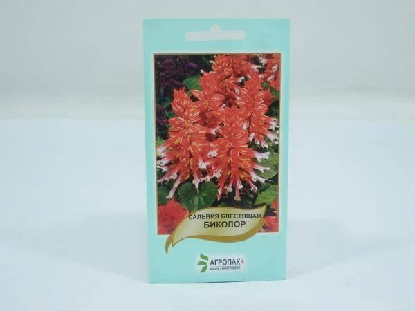 Семена сальвии блестящей Биколор