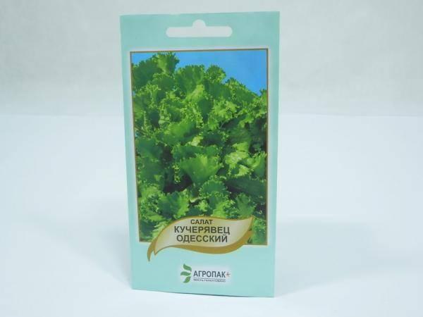 Семена салата Одесский Кучерявец - 0,5 г
