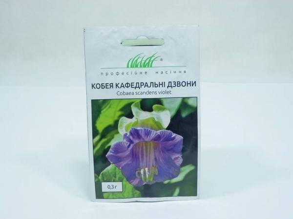 Семена кобеи Кафедральные колокола - 0,3 г