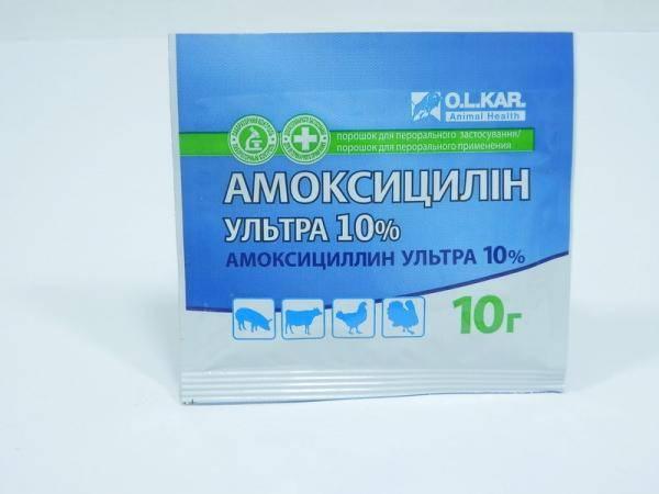 Амоксицилин-ультра,антибиотик -10 г