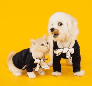 Одинаковые наряды