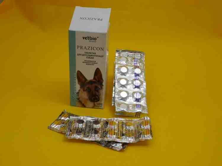 Празикон, таблетки от глистов для собак и кошек