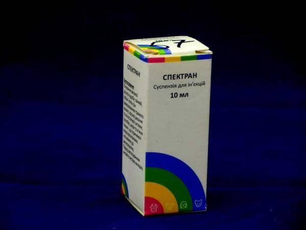 Спектран, антибиотик бактерицидного спектра действия