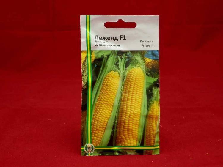 Семена кукурузы Леженд