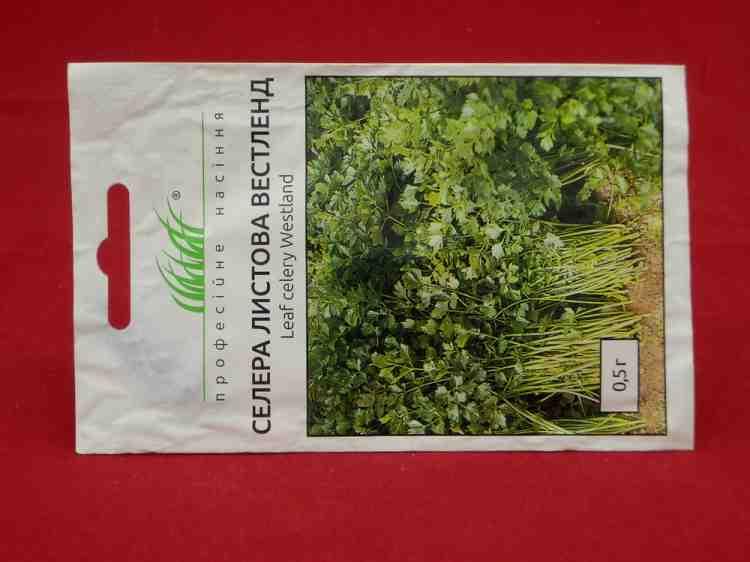 Семена сельдерея листового Вестленд