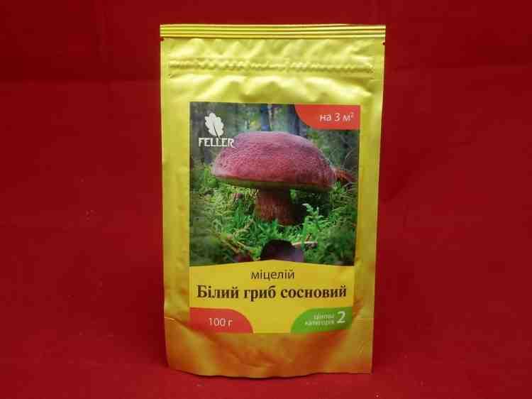 Мицелий белого гриба соснового