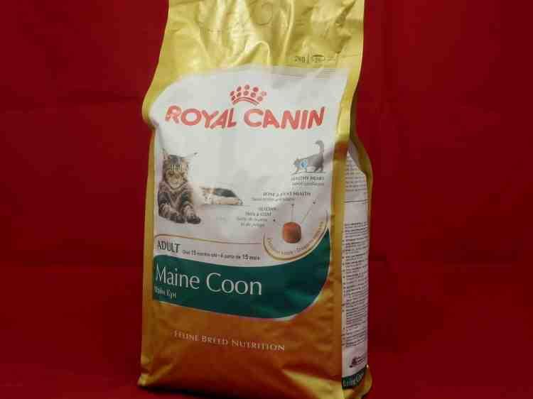 Royal Canin Maine Coon (Роял Канин для мэйн-кунов)