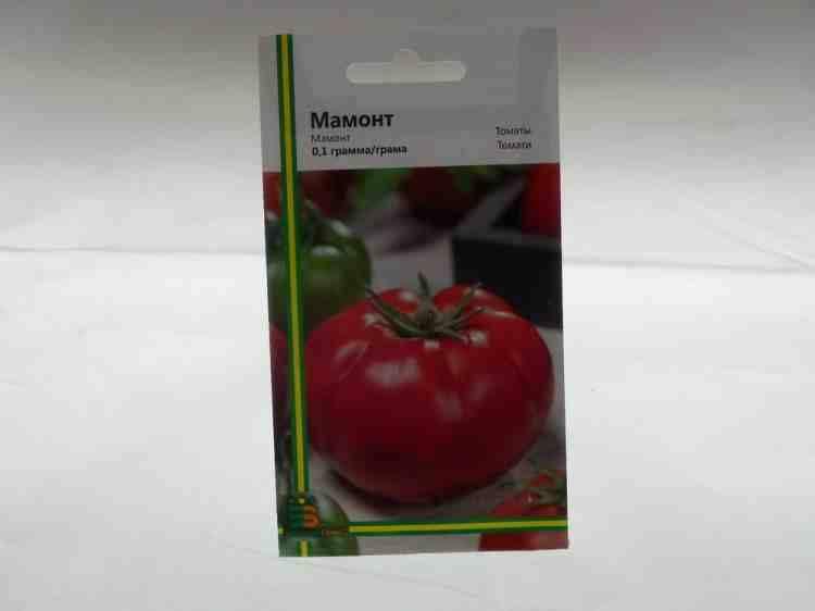 Семена томатов Мамонт