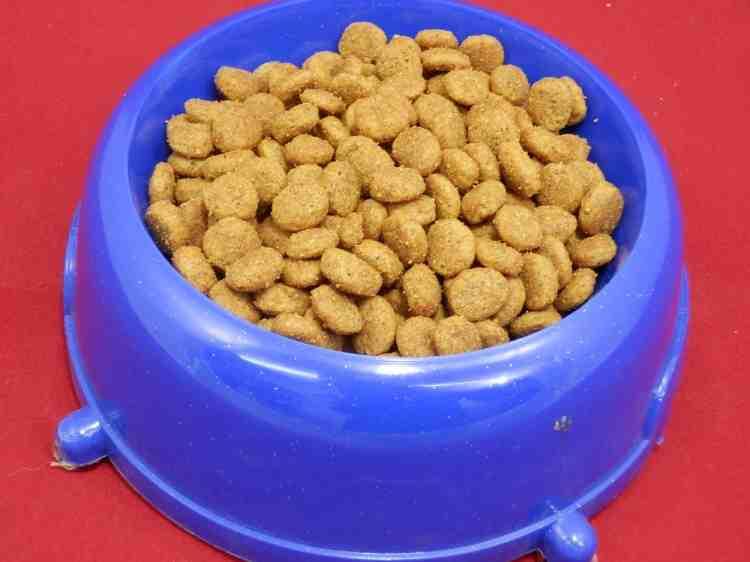 Cat Chow Urinary Tract Health (Кэт Чау) для здоровья мочевыводящих путей