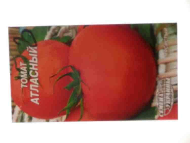 Семена томата Атласный