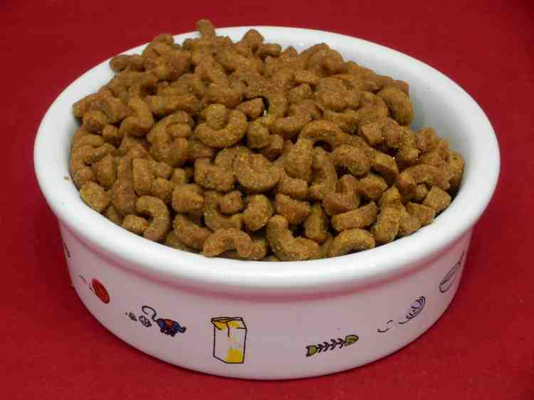Club 4 Paws (Клуб 4 лапы), сухой корм для котов