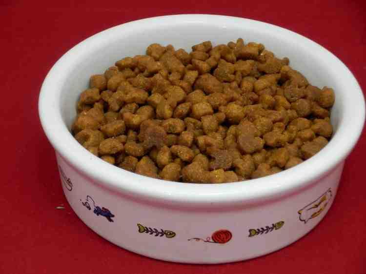 Club 4 Paws (Клуб 4 лапы) pH Control, сухой корм для кошек при мочекаменной болезни