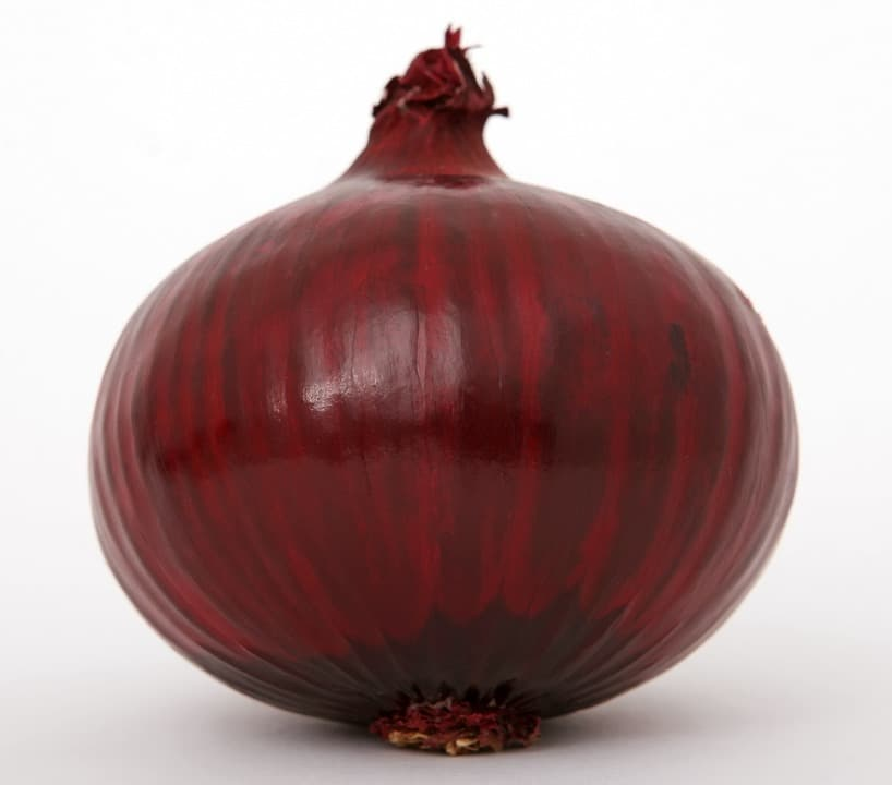 Лук красный Брауншвайгер
