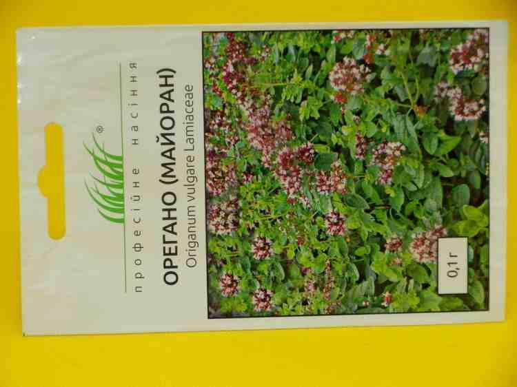 Семена орегано (майорана)