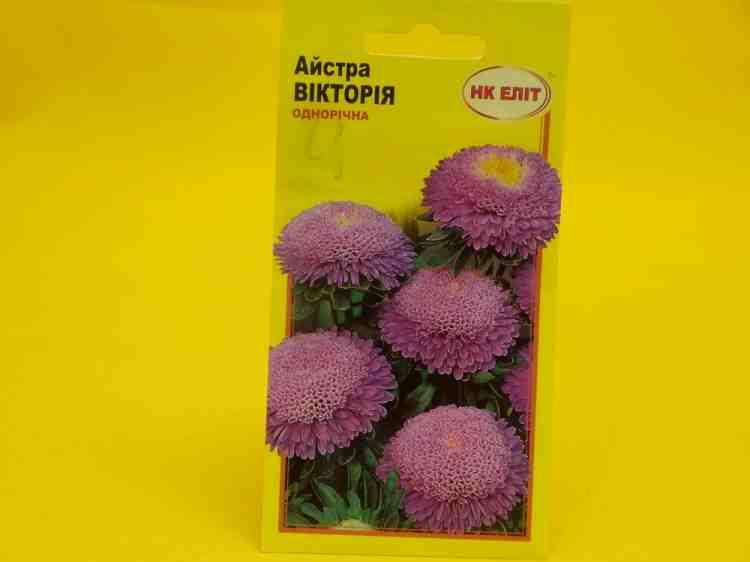 Семена астры Виктория