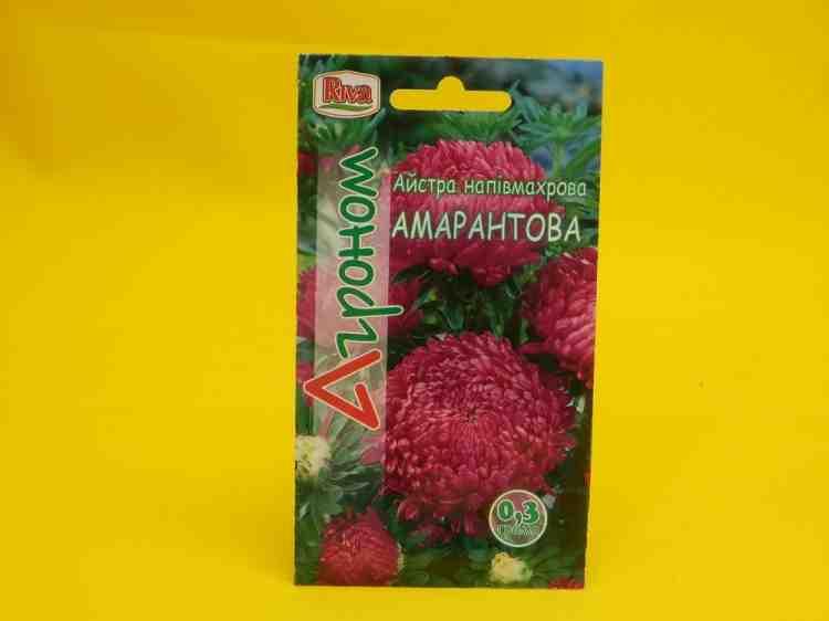 Семена астры Амарантовая