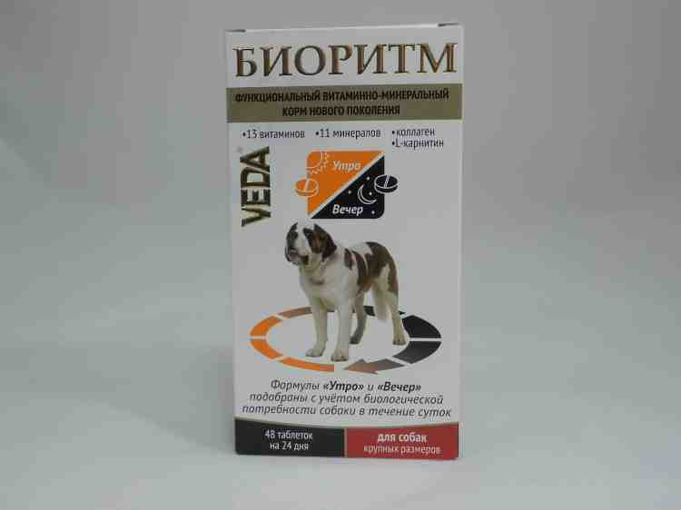 Биоритм для собак (утро и вечер)