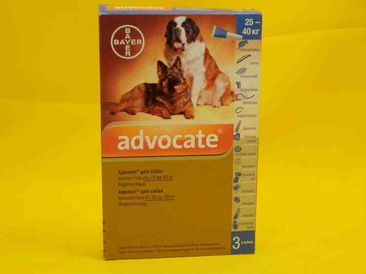 Адвокат Advocate для собак