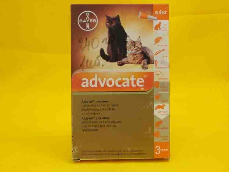 Адвокат Advocate для кошек