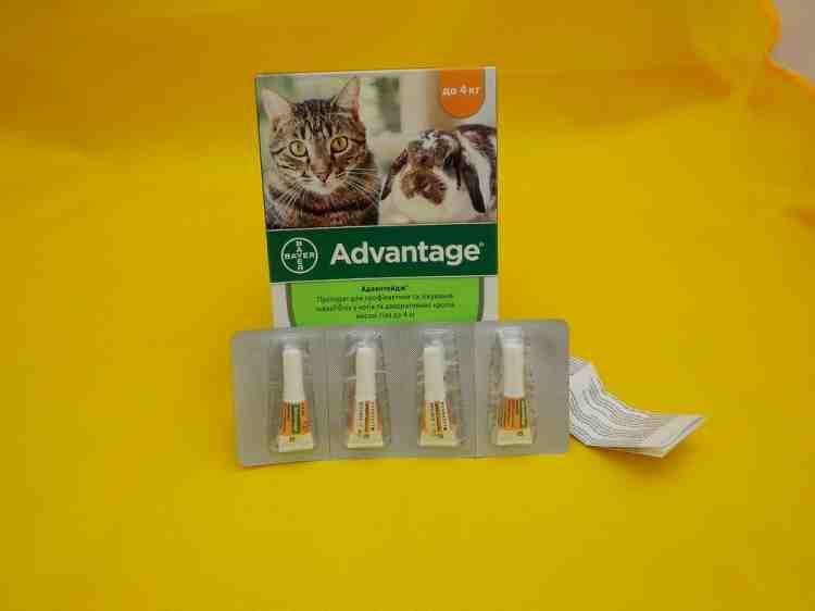 Адвантейдж Advantage для кошек и кроликов 1 доза