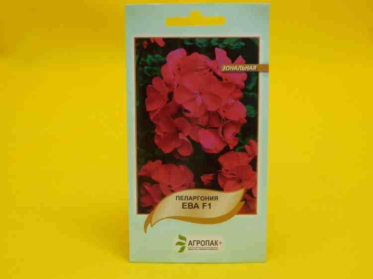 Семена пеларгонии Ева