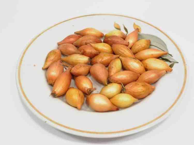 Центурион, лук севок - 1 кг