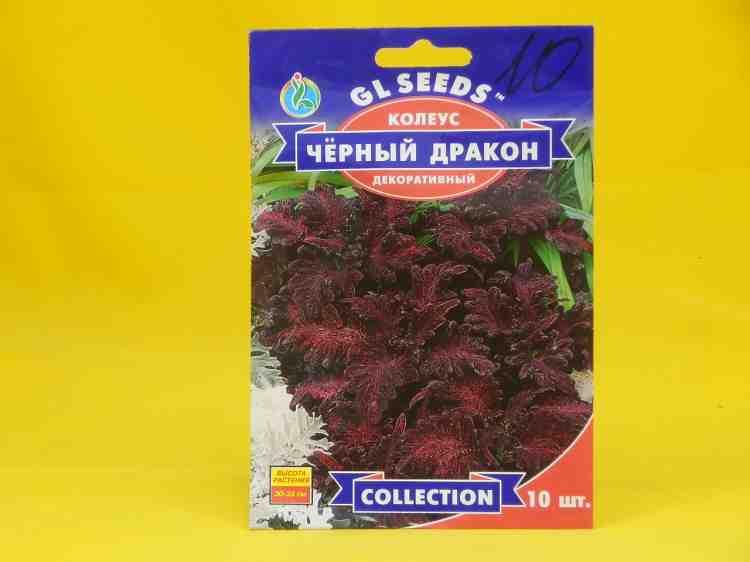 Семена колеуса декоративного Черный Дракон  - 10 шт.