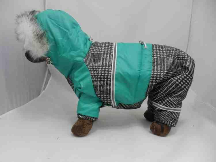Одежда для собак Комбинезон Томас Мальчик