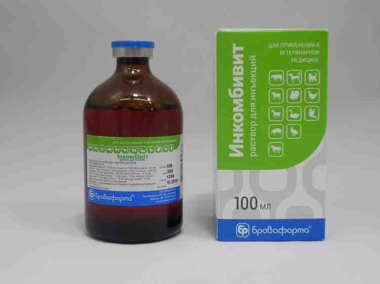 Витаминно-аминокислотный препарат Инкомбивит, 100 мл